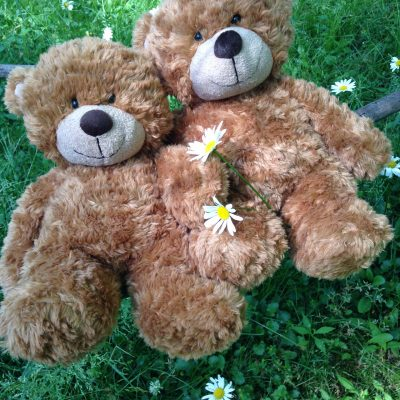 BEARS WITH DAISIES